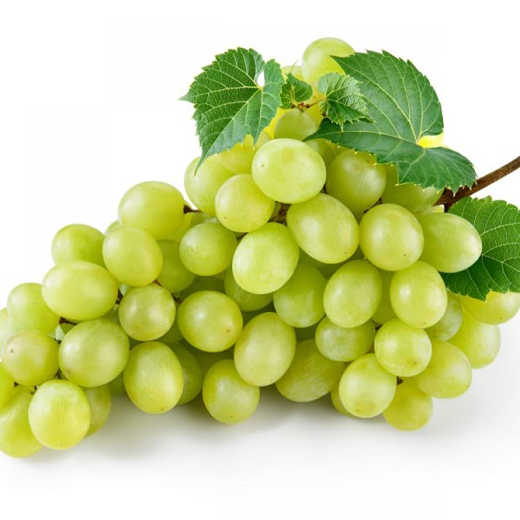 WHITE GRAPPES