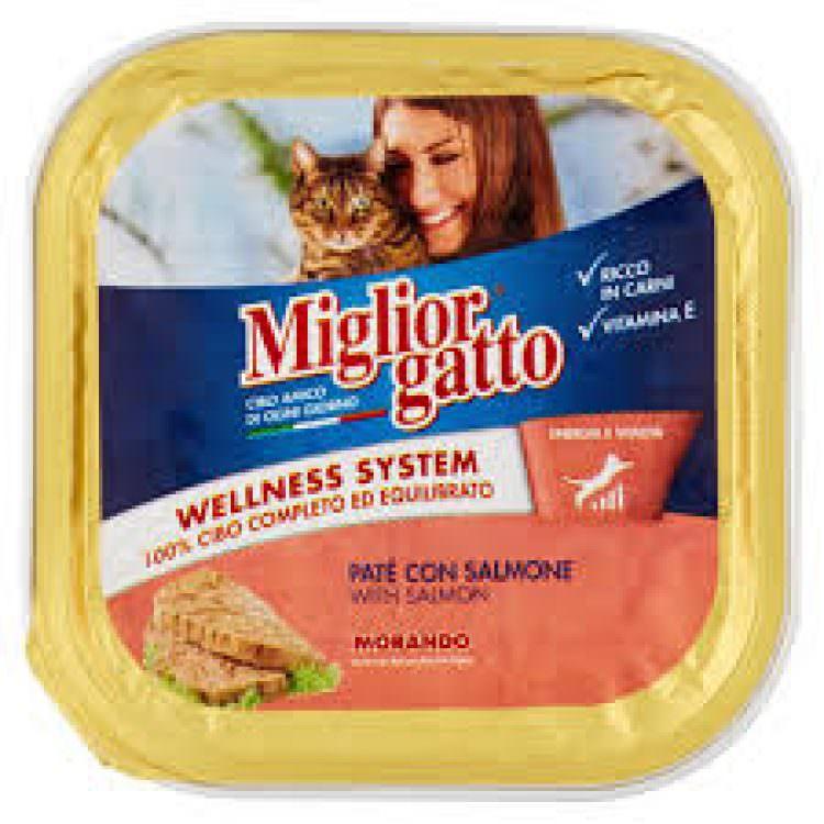 MIGLIOR GATTO CAT FOOD PATE SALMON 100g
